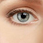 Brighton Permanent Makeup Permanent Eyelash-liner
